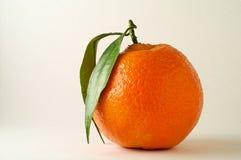 Mandarina con el primer de la hoja (1) Imagenes de archivo