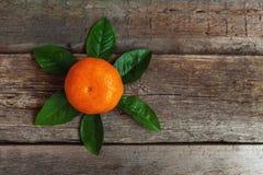 Mandarina con las hojas en fondo de madera Fotografía de archivo