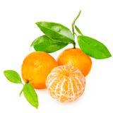 Mandarina con segmentos foto de archivo libre de regalías
