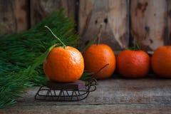 Mandarina de la Navidad en los trineos del vintage con las ramas del árbol de abeto en el fondo de madera Fotografía de archivo