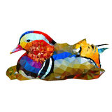 Mandarina Duck Foto de archivo