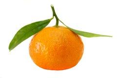 Mandarina orgánica Imagenes de archivo
