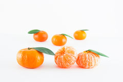 Mandarina, reticulata de la fruta cítrica imagen de archivo