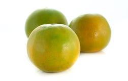 Mandarina verde Fotos de archivo libres de regalías
