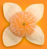 Mandarina y cáscara #1 | Caminos de recortes Foto de archivo libre de regalías