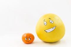 Mandarina y pomelo divertidos stock de ilustración