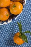 Mandarinapelsinbunke Royaltyfri Bild