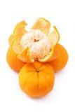 mandarinapelsiner Royaltyfri Bild
