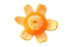 mandarinapelsiner Fotografering för Bildbyråer