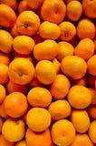 mandarinapelsiner Royaltyfri Foto
