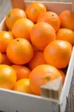 Mandarinapelsiner Arkivfoto