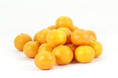 Mandarinapelsiner som travas på vitbakgrund,   Royaltyfria Bilder