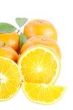 Mandarinas aisladas. Fotos de archivo