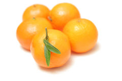 Mandarinas aisladas en el fondo blanco Imagen de archivo libre de regalías