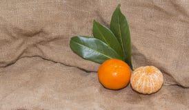 Mandarinas anaranjadas brillantes con las hojas verdes Foto de archivo libre de regalías
