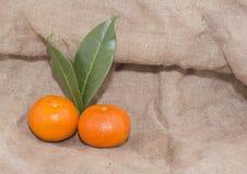 Mandarinas anaranjadas brillantes con las hojas verdes Foto de archivo