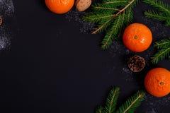 Mandarinas anaranjadas con las ramas spruce en un negro Fotografía de archivo