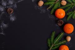 Mandarinas anaranjadas con las ramas spruce en un negro Fotos de archivo