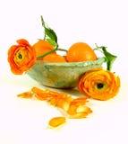 Mandarinas con el ranúnculo Fotografía de archivo