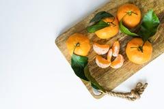 Mandarinas con las ramas en un fondo blanco imagen de archivo