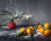 Mandarinas con los prospectos en un fondo negro con nieve Florero decorativo rojo con las ramas del abeto fotos de archivo