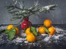 Mandarinas con los prospectos en un fondo negro con nieve Florero decorativo rojo para la granada con las ramas del abeto Primer fotografía de archivo libre de regalías
