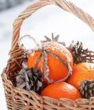 Mandarinas de la Navidad y conos del pino en la nieve Foto de archivo libre de regalías