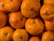 Mandarinas de la satsuma Fotografía de archivo