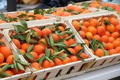 Mandarinas de las clementinas Fotografía de archivo