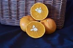 Mandarinas de Valencia imagenes de archivo