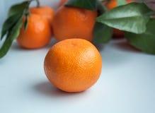 Mandarinas del protector de pantalla del fondo, frutas, tema del Año Nuevo imagen de archivo libre de regalías