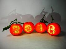 Mandarinas del ` s del Año Nuevo con los números 2018 Fotos de archivo libres de regalías