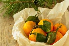 Mandarinas en cocinar horizontal de papel Imagen de archivo