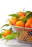 Mandarinas en el vector Fotos de archivo