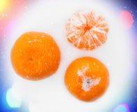 Mandarinas en la nieve Imagen de archivo libre de regalías