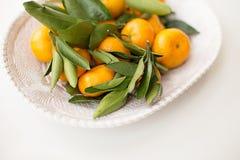 Mandarinas en una placa blanca con las hojas verdes imágenes de archivo libres de regalías