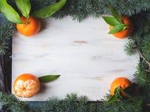 Mandarinas frescas en el tablero blanco Fotografía de archivo libre de regalías