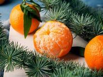 Mandarinas frescas en el tablero rústico blanco Imagenes de archivo