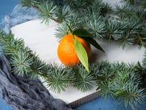 Mandarinas frescas en el tablero rústico blanco Fotografía de archivo libre de regalías
