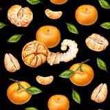 mandarinas Gráfico de la acuarela Mandarina pelada madura Trabajo hecho a mano Fruta tropical Alimento sano Modelo inconsútil par Foto de archivo