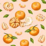 mandarinas Gráfico de la acuarela Mandarina pelada madura Trabajo hecho a mano Fruta tropical Alimento sano Modelo inconsútil par Imagenes de archivo
