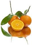 Mandarinas jugosas (aisladas) Fotos de archivo