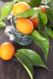 Mandarinas maduras Fotografía de archivo libre de regalías