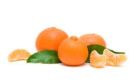 Mandarinas maduras aisladas en el fondo blanco Imagen de archivo