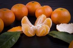 Mandarinas maduras enteras alrededor de prospectos y de partículas verdes de la mandarina foto de archivo