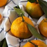 Mandarinas maduras frescas en una superficie de madera blanca, opinión de ángulo bajo Primer fotos de archivo libres de regalías