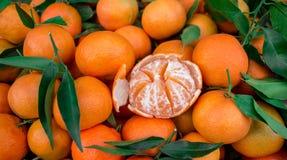 Mandarinas para la venta Imágenes de archivo libres de regalías