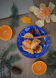 Mandarinas y canela foto de archivo libre de regalías