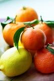Mandarinas y limones mezclado de frutas frescas con las hojas Fotos de archivo