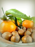 Mandarinas y nueces Imagenes de archivo